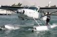 Seawings.jpg